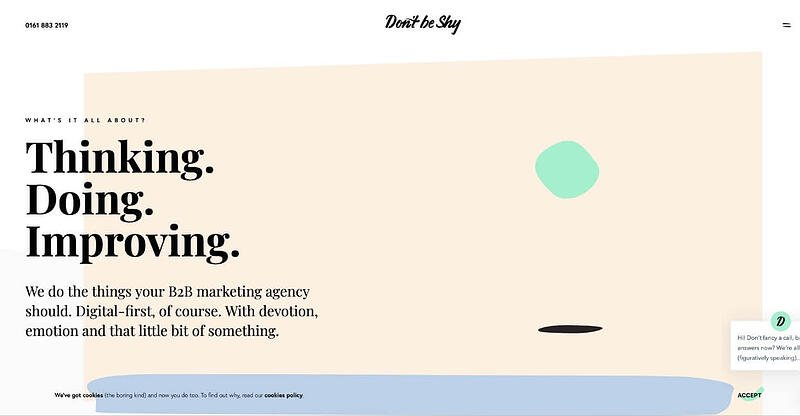 Don't Be Shy Marketing Agency Website