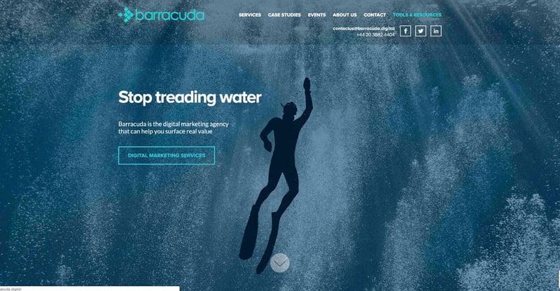 Barracuda Marketing Agency Website