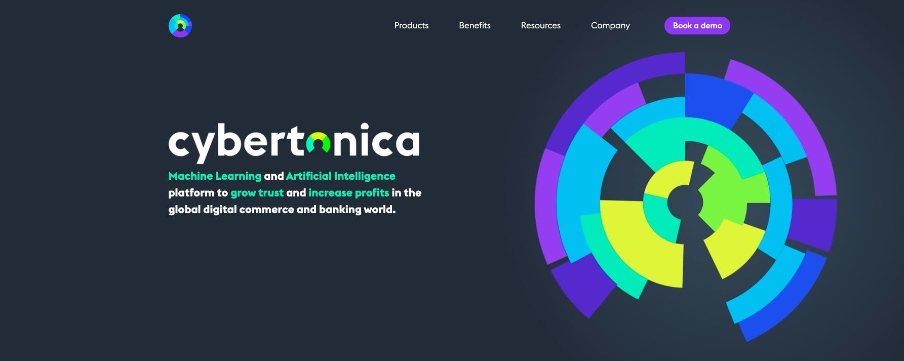 Cybertonica FinTech Website Homepage
