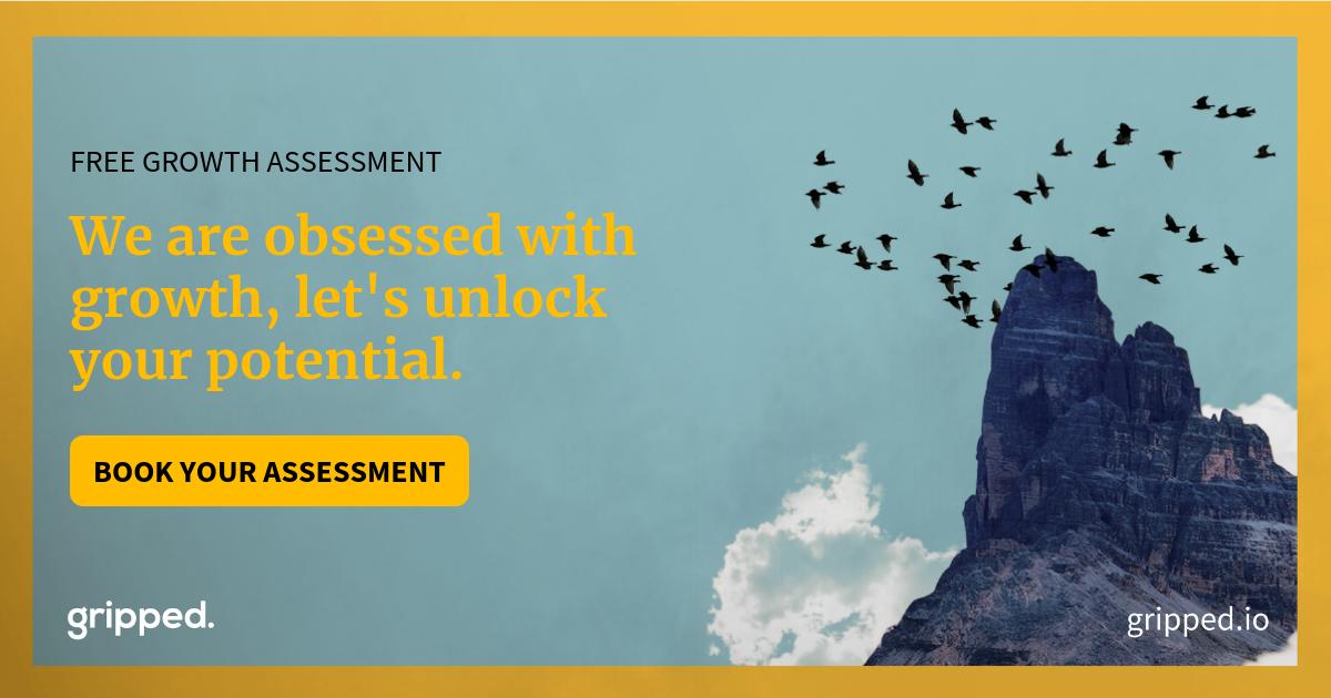B2B Growth Assessment