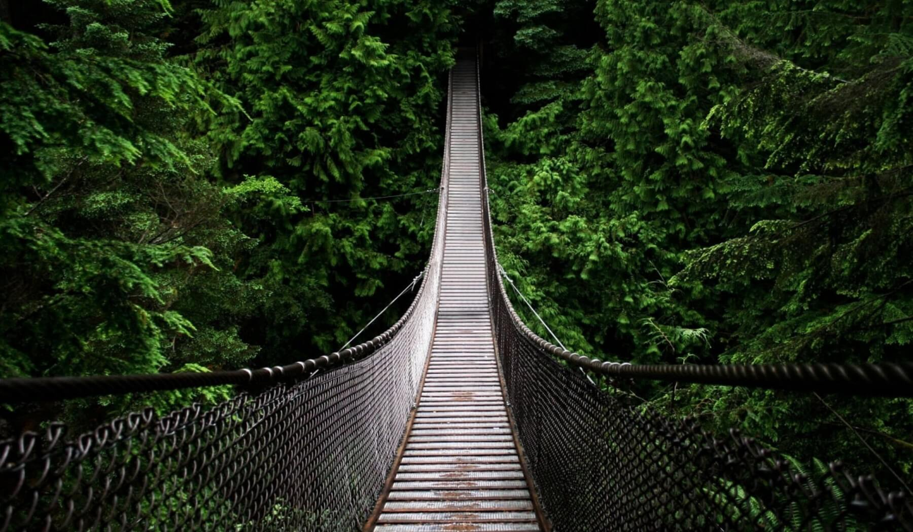 Building bridges between sales and marketing